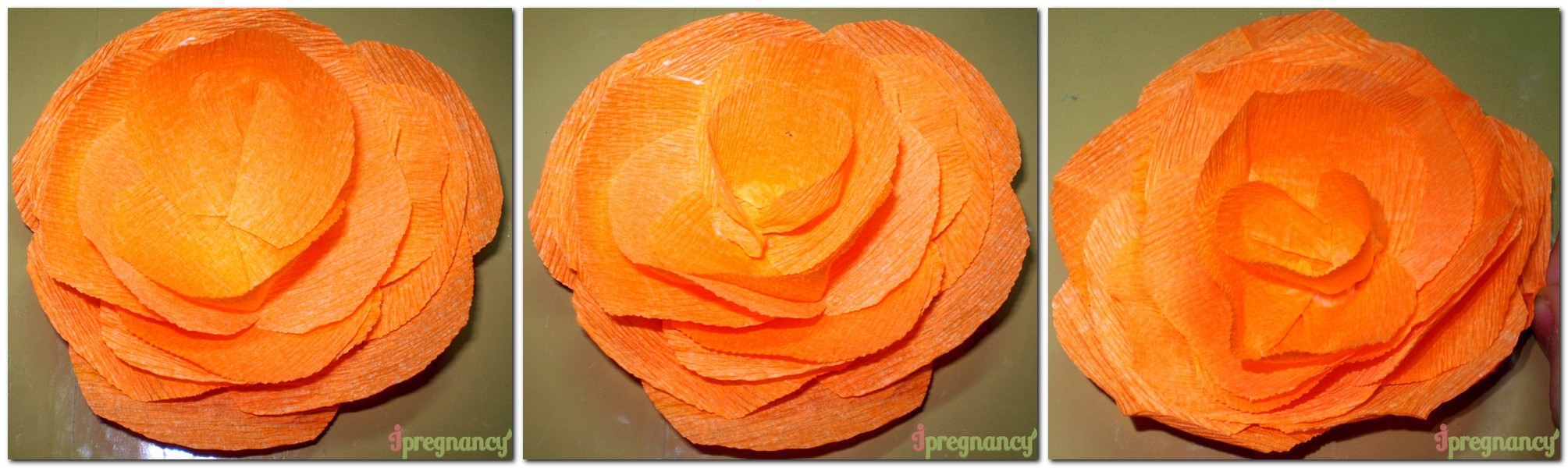 праздничный цветок 4