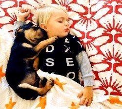 ребенок боится собаки 4